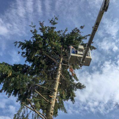 autoplosina autoplošiny plošina prenájom jopi Orez stromov